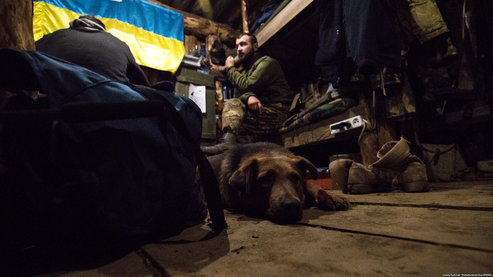"Dog by nickname, ""Zaja#bis,"" warms himself in a dugout furnished with a wooden floor (this is rarity and luxury"